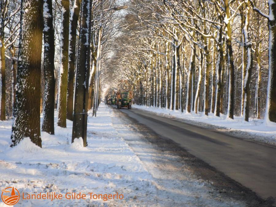 2009-Kerststal-afbreken-105
