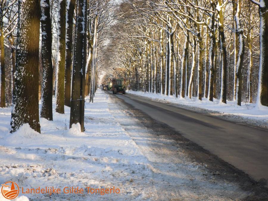 2009-Kerststal-afbreken-106