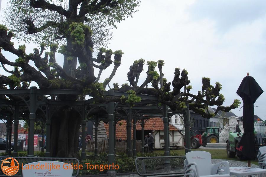 2012-Kerststal-Merodefeesten-Westerlo-089
