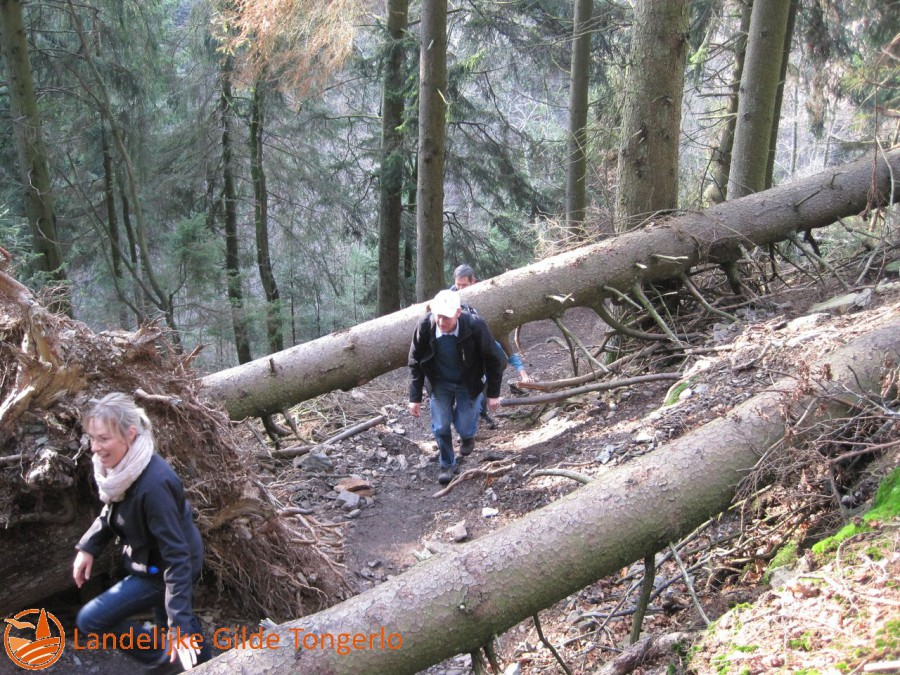 2014-wandeling-Xhoffrai-039
