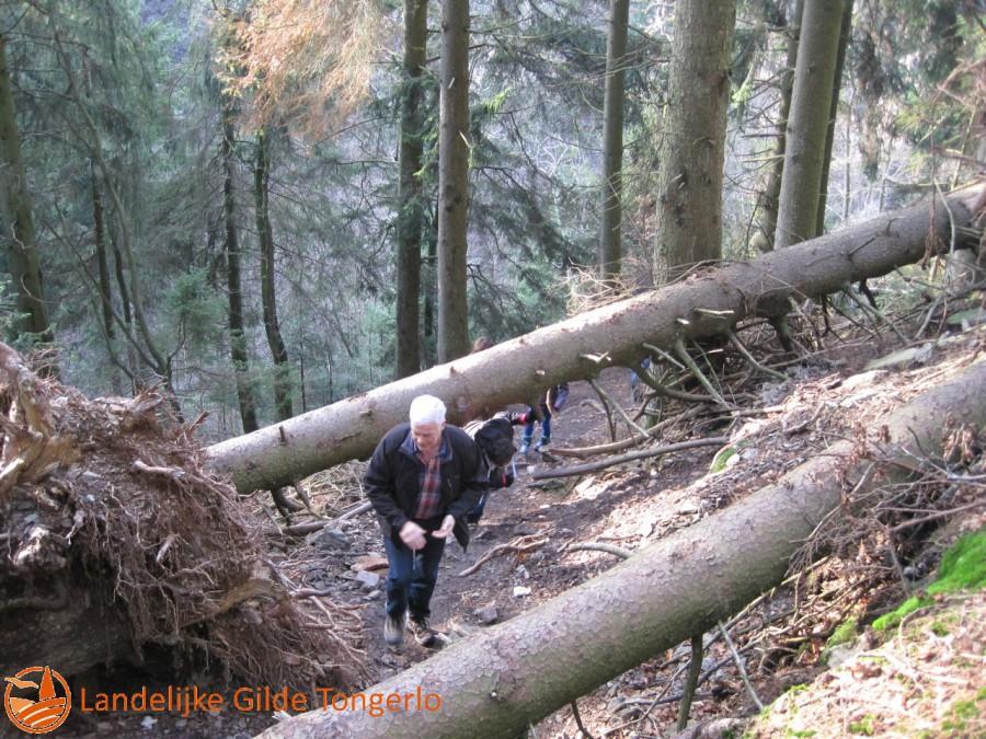2014-wandeling-Xhoffrai-041