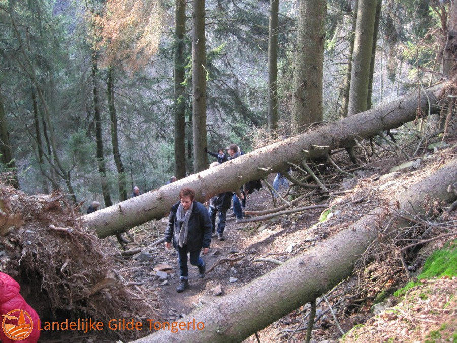 2014-wandeling-Xhoffrai-048