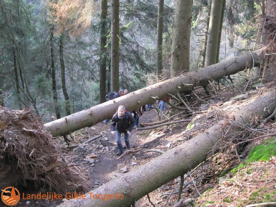 2014-wandeling-Xhoffrai-051